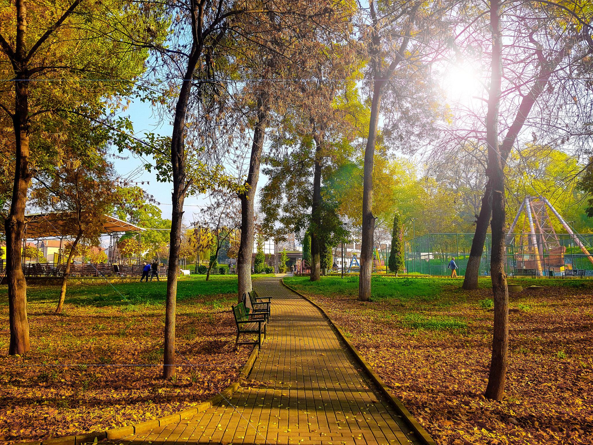 Këto janë benefitet shëndetësore të stinës së vjeshtës